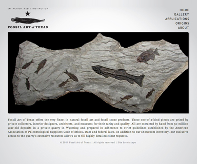 Fossil Art of Texas